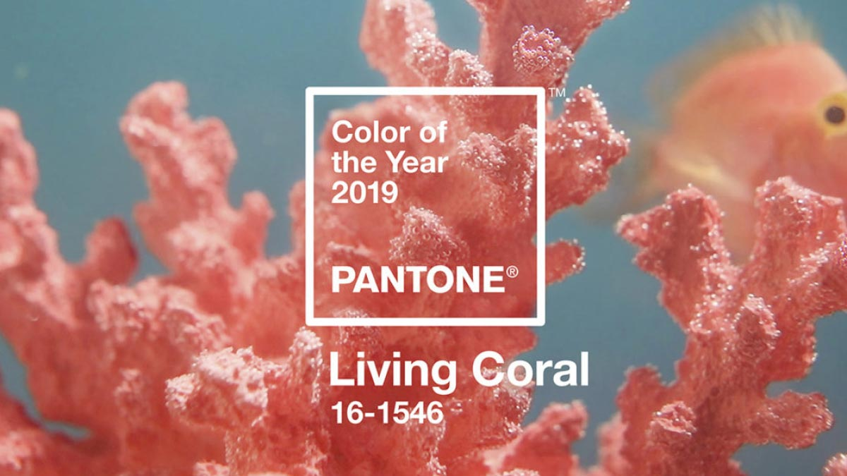 The color of the year is Living Coral   CSG Creative